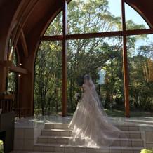 桂由美ブランドのドレスも選べます。