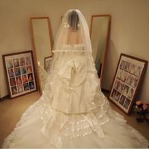 カラーはなしで白いドレス1着にしました。