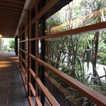 プリマルーチェの廊下は木目が綺麗