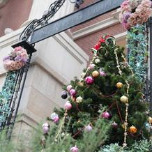 外階段のクリスマスツリー