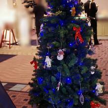 12月は受付横にクリスマスツリー