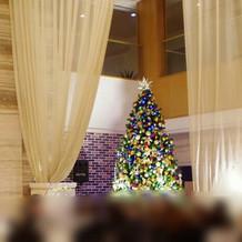 ロビー挙式横のクリスマスツリー