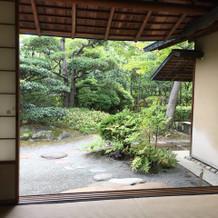 茶室から見える庭
