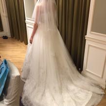 初めてのドレス着用したものです。