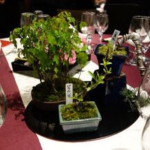 各テーブルに盆栽を飾らせてもらいました