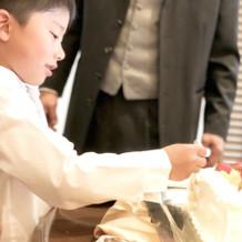 息子がケーキを新郎に食べさせました