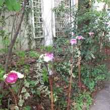 入り口アプローチの装花