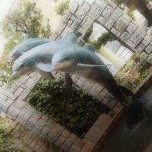 イルカの広場