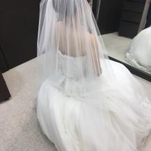 前撮りの時は別のドレスを選びました
