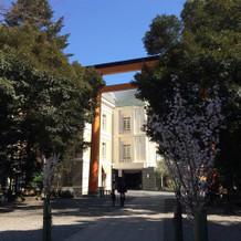 大きな鳥居の向こうの建物が氷川会館。