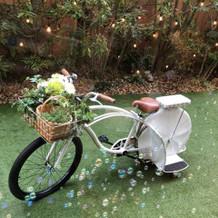 自転車大活躍♪