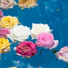 プールに薔薇が浮かんでました