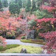 紅葉が色づいていてゲストに好評でした