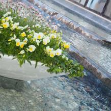 庭には綺麗な花と水が一面にある