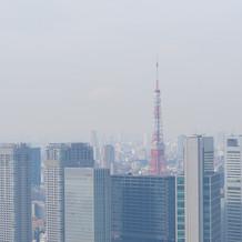 東京タワーみえます