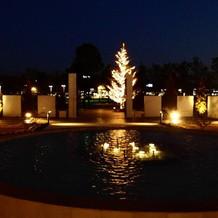 夜の噴水です