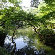 広い池も素敵です