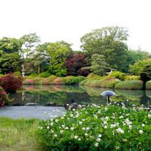 綺麗な庭園でした
