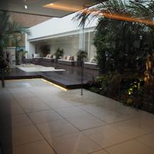 雨の屋上ガーデン