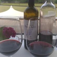 試食でもワイン飲み放題という嬉しさ