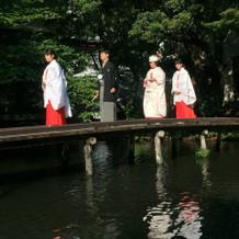 池、桟橋、鯉と和の趣が感じられた。