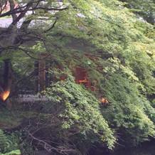 庭からみた神殿