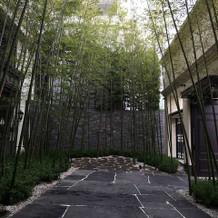 京都に来たかのような竹林でお出迎え