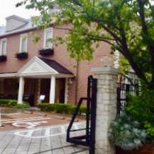 邸宅の周りは草木に囲まれていました。