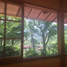 窓の感じが個人的に気に入りました