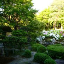 日本庭園(親族待合から)