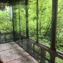 緑が綺麗な待合スペース