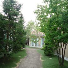 入口からお庭が広がる。