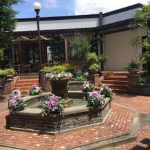 お庭もとっても素敵でした!