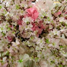 2月でしたが、桜を沢山入れて頂きました!