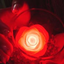 バラが光る演出をしました。