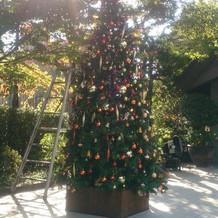 八芳園入り口・クリスマスツリー