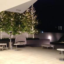 ソフィー邸のお庭(夜)