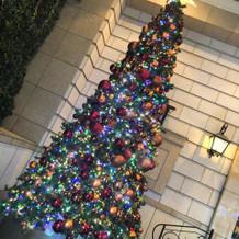 式場の入り口にあるクリスマスツリー