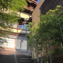 入口の竹林