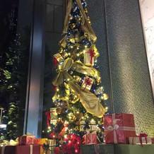 11月になるとクリスマスツリーが☆
