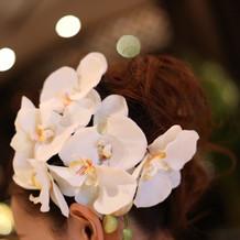 小物・和装・花