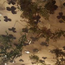 天井の装飾も可愛い!!