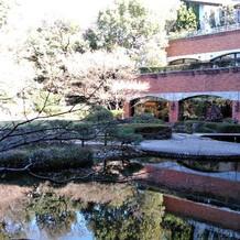 庭には池もあります。