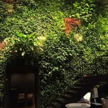 会場の自然な壁