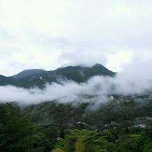 霧がかかると幻想的。景色も楽しめる。