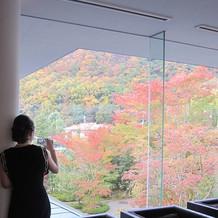 待合スペースからの紅葉。