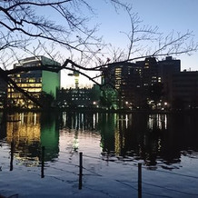 上野公園から見た夜のLUCIS外観