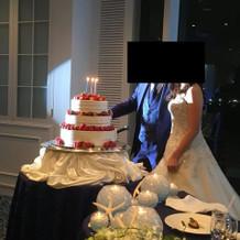 ウェディング&誕生日ケーキ