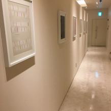 控室トイレ前インテリア
