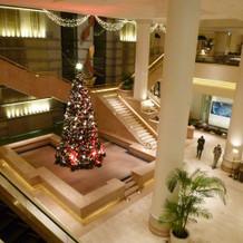 大階段とクリスマスツリー